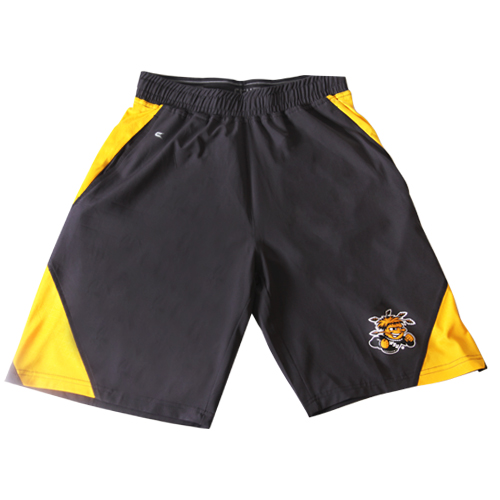 Image For Colosseum Grey w/ Gold Stripe Shorts