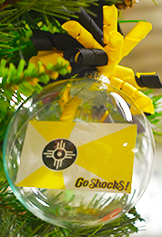 Cover Image For Go Shocks!™ Flag Ornament